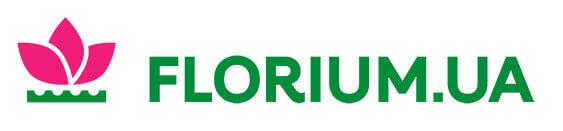 Florium - Cashback 3.5%